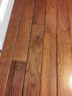 Hardwood Flooring Repairs To Water Damaged Boards Are Not Quite As Simple Is Many People Think When A Refrigerator Or Dishwasher Leaks Onto Wood Floor